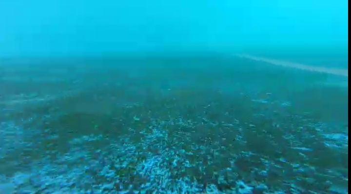 Ciudadanos denuncia que así está el fondo de la piscina olímpica de Azuqueca de Henares