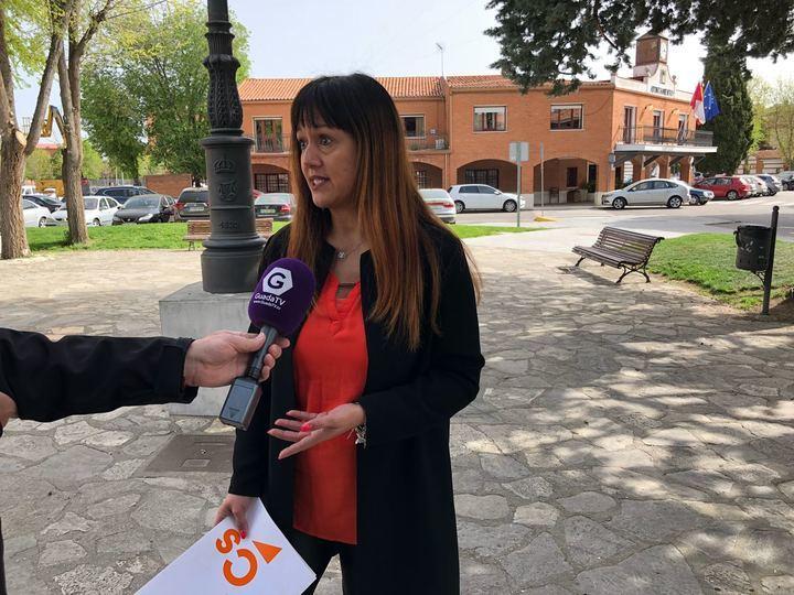 Cs Azuqueca pide que se retiren todos los avisperos de las zonas infantiles