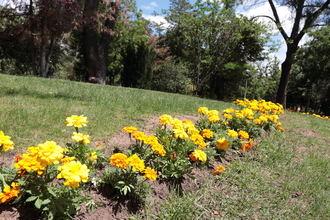 Sábado soleado en Guadalajara con máximas de 34ºC y noches calurosas rondando los 20ºC