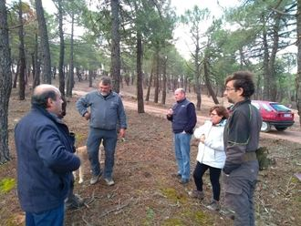 La Diputación abre la convocatoria de ayudas para resineros, ferias agrícolas y los Grupos de Desarrollo Rural