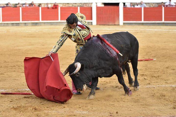 Morante y Talavante puntúan en Brihuega