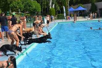 Unos 150 perros y 200 personas disfrutaron del Acuadog de Guadalajara