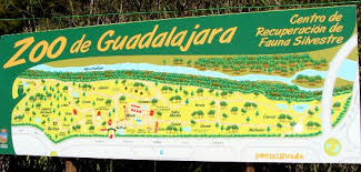 Muere la osa más veterana del zoo de Guadalajara