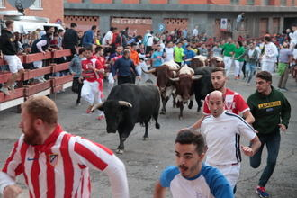 Tres heridos en el Segundo Encierro de las Ferias de Guadalajara, uno por asta de toro con desgarro en el escroto