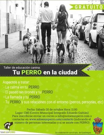 Quedan plazas para los talleres de cultivo en macetas y adiestramiento canino en Guadalajara