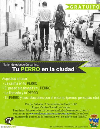El 17 de noviembre en el centro social Los Valles, nueva sesión de los talleres de adiestramiento de perros