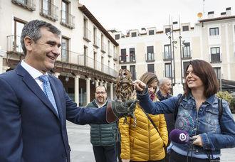 El Centro de Recuperación de Animales del ayuntamiento de Guadalajara recibe unos 400 ejemplares al año