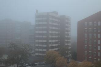 Brumas matinales, 4ºC de mínima y 12ºC de máxima este lunes en Guadalajara