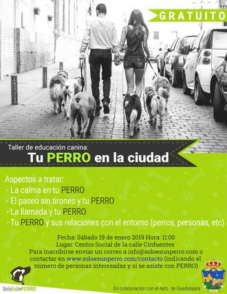 El sábado 19 de enero, nuevo taller de educación canina en Guadalajara