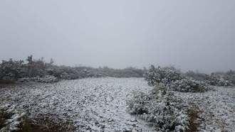 -3ºC de mínima y 7ºC de máxima este martes en Guadalajara que está en alerta amarilla por riego de nieve