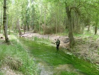 Se publica la Orden de Vedas de Pesca para 2019 en Castilla La Mancha