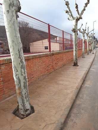 Terminada la renovación de aceras en la calle Santa Bárbara de Sigüenza