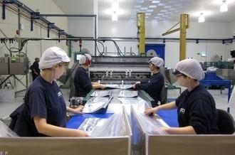 Mal dato : España registra junto con Irlanda en diciembre la mayor caída de la producción industrial en la UE