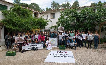 Stop Macrogranjas Comarca de Molina considera