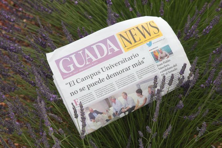 Desaparecen las lluvias pero los termómetros continúan por los 22ºC este jueves en Guadalajara