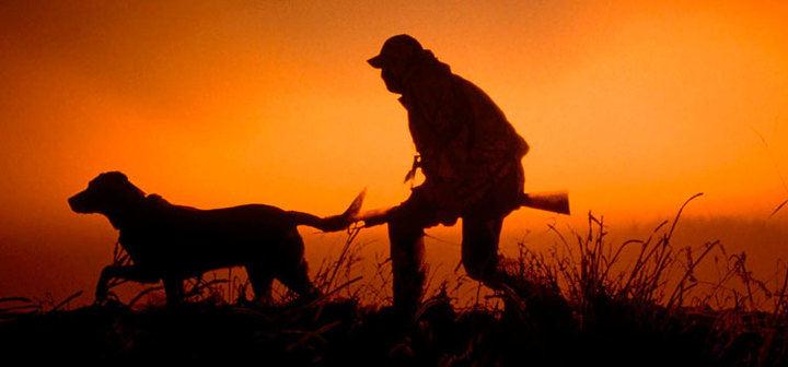 Publicados los periodos hábiles de caza y de veda para 2019-2020 en Castilla-La Mancha