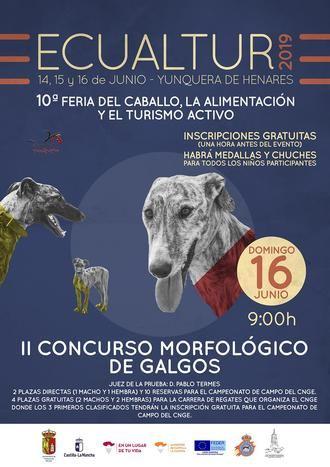 Ecualtur Yunquera acoge el II Concurso Morfológico de Galgo Español