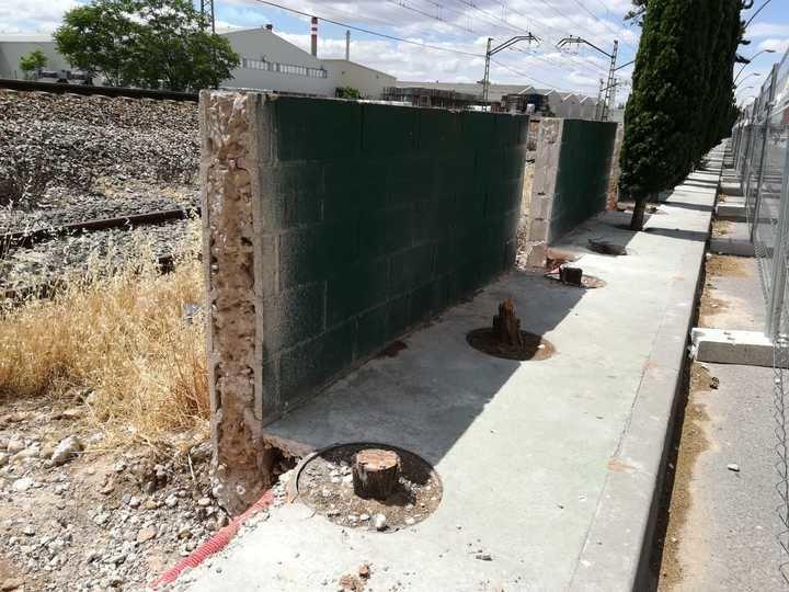 """Izquierda Unida denuncia la """"tala indiscriminada"""" de más de 30 cipreses en Azuqueca"""