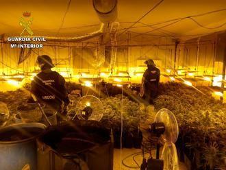 La Guardia Civil desmantela una plantación de marihuana en Pioz