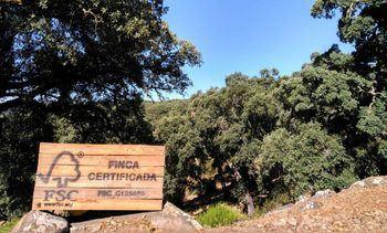 Concluye el estudio de la Universidad de Alcalá y FSC para lograr bosques más resistentes al cambio climático
