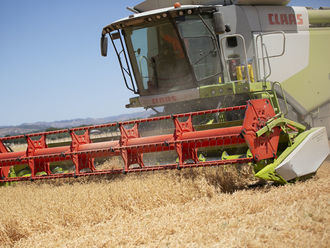 La consejeria de Agricultura plantea suspender la recolección mecánica de cereal en CLM por el calor