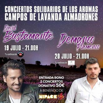 Comunicado: suspendido el concierto de David Bustamante del 19 de julio en los campos de lavanda de Almadrones