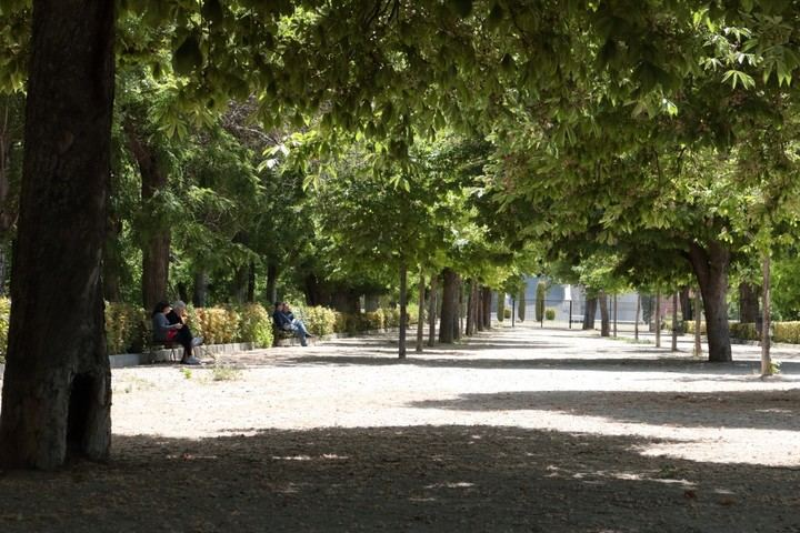 Continúan las altas temperaturas este lunes en Guadalajara