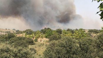 Doce medios, dos de ellos aéreos y diez terrestres trabajan en controlar un incendio forestal en Tamajón