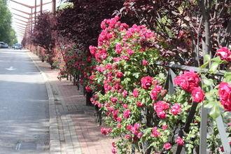 Verano por el día y otoño por la noche en este martes de agosto en Guadalajara