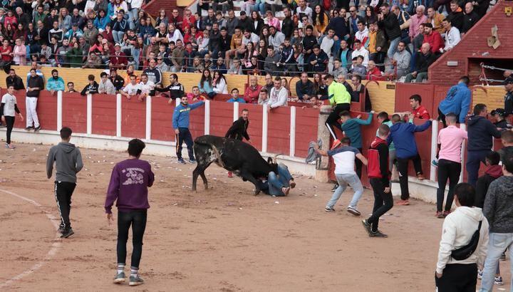 Foto : EDUARDO BONILLA