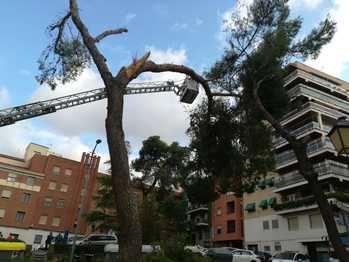Atendidas este domingo en Guadalajara más de 80 incidencias por la lluvia en solo dos horas