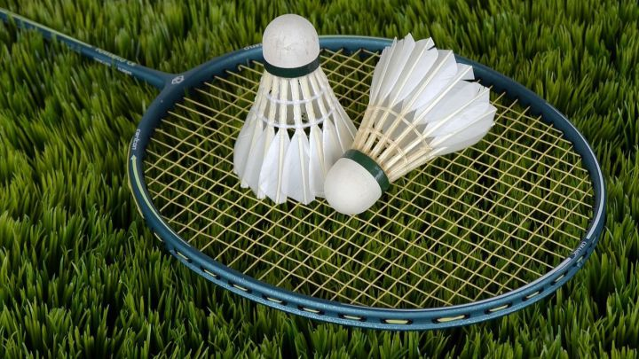 ¿Conoces todos los deportes a los que se puede apostar?