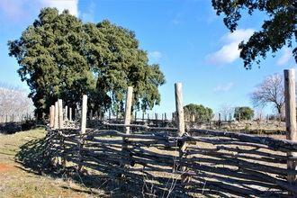 Con 2,5 hectáreas de superficie, el Área Recreativa de Alcohete es la tercera zona verde más grande de Yebes