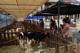 La Programación de Verano de Yunquera de Henares centra el fin de semana en los amantes de los animales