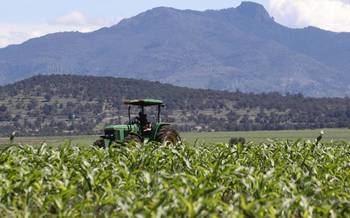 La Consejería de Agricultura de la Junta de Page deja FUERA de los Planes de mejora a CIENTOS de agricultores y ganaderos de la CLM y de Guadalajara