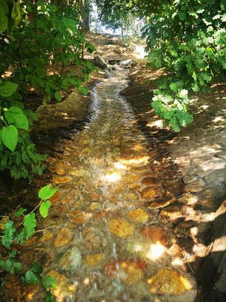 El Ayuntamiento de Azuqueca recupera un afluente del arroyo de La Quebradilla