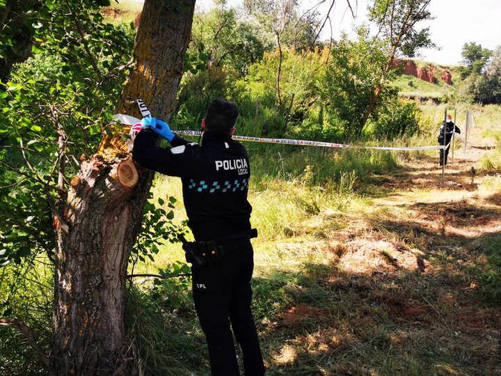 El Ayuntamiento de Azuqueca paraliza las obras en la ribera del río Henares