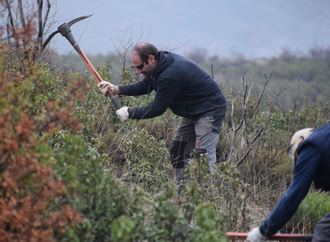 Da comienzo un proyecto piloto para la restauración del incendio de 2012 en Checa y Chequilla