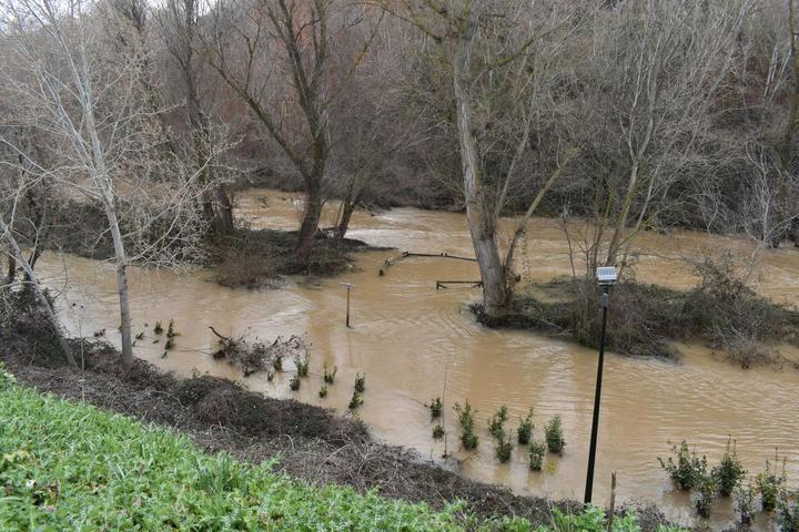 Ecologistas en Acción de Guadalajara y el Grupo Local de WWF recuerdan que advirtieron del riesgo de inundación por las obras en el Henares