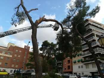 El Ayuntamiento de Guadalajara cierra algunos parques y zonas verdes por las rachas de viento que podrían alcanzar los 100km/h