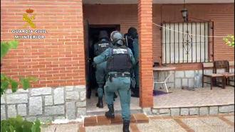 15 detenidos y 1.667 plantas de marihuana incautadas en tres actuaciones en Toledo