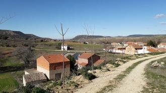 El Ayuntamiento de Mandayona planta más de 100 árboles