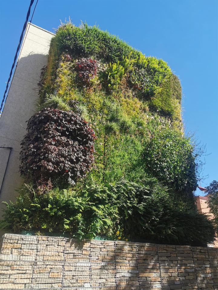 Denuncian las molestias a los vecinos y las deficiencias del 'jardín vertical' de Azuqueca