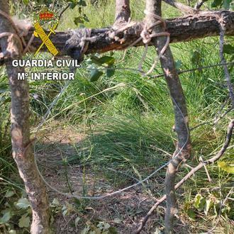 Denunciado un vecino de Romancos por uso de medios prohibidos de caza, utilizaba lazos de acero