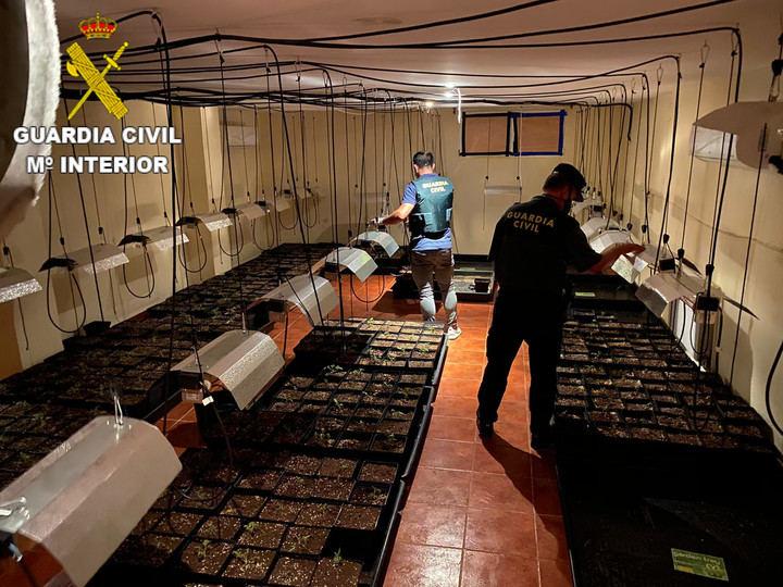 La Guardia Civil detiene a una persona por cultivo de marihuana en Fuentenava de Jábaga