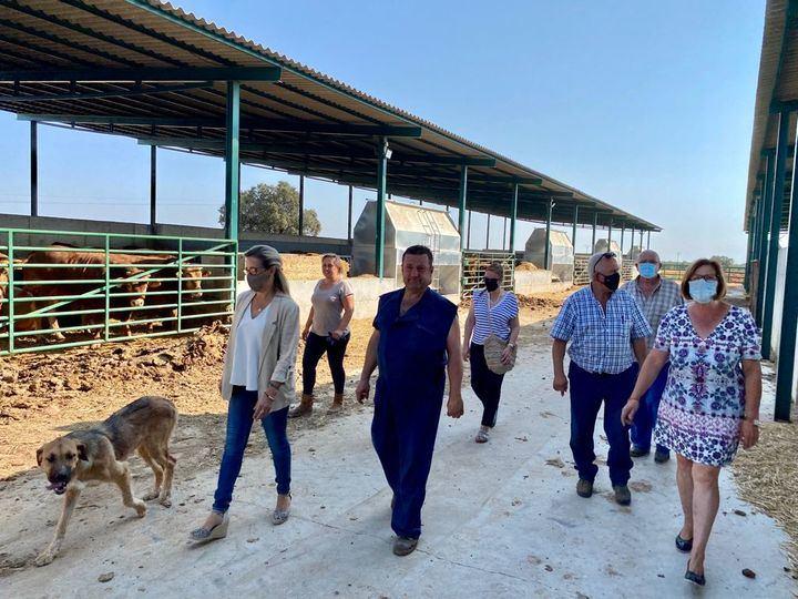 El PP-CLM pedirá en las Cortes la reprobación del ministro Garzón por criminalizar a los ganaderos con fondos públicos