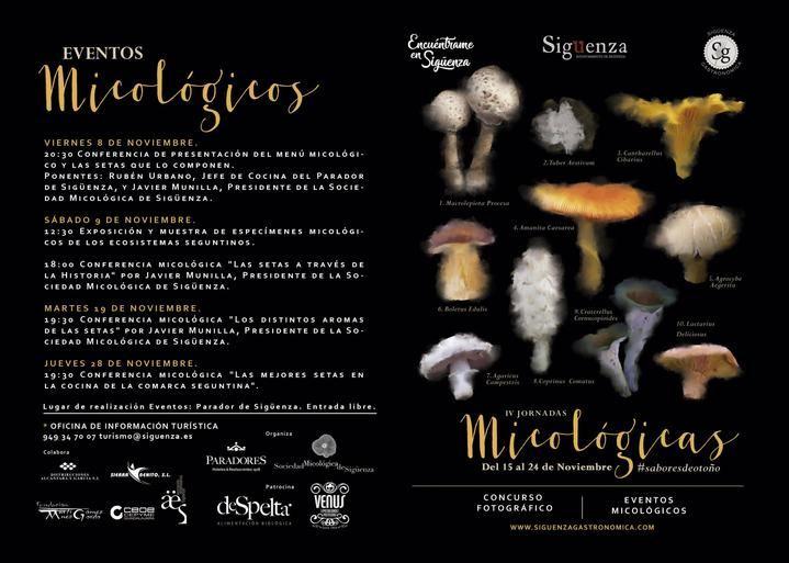 Del 15 al 24 de noviembre, IV Jornadas Micológicas de Sigüenza
