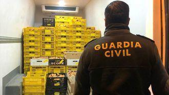 Incautados MIL KILOS de níscalos recogidos ilegalmente en Alcolea del Pinar