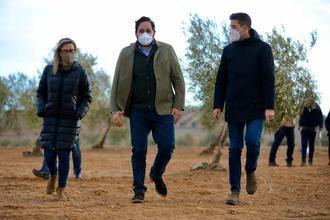 Paco Núñez exige a Page soluciones inmediatas para controlar la plaga de conejos en el campo regional e indemnizar los daños a los agricultores