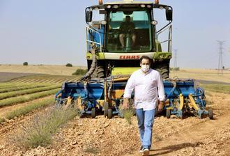 """Paco Nuñez visita los campos de lavanda en Almadrones y considera """"vital"""" que el Gobierno regional de Page ponga en marcha"""